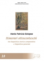 Itinerari ottocenteschi tra linguistica storico-comparativa e linguistica generale